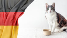 Russian authorities ban pet food supplies from Germany